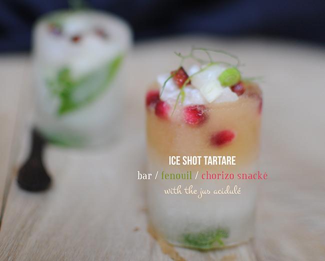 intro-iceshot
