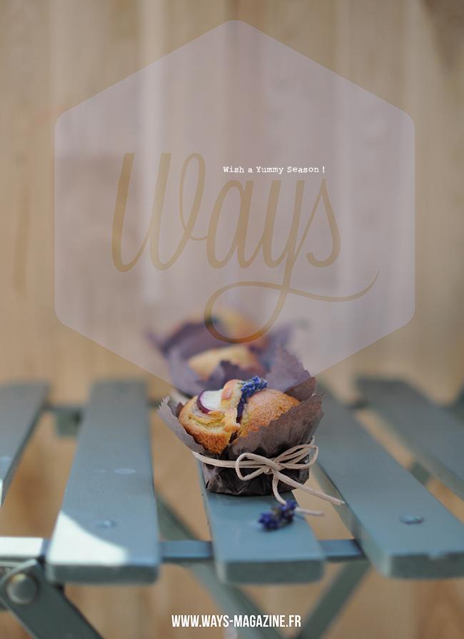 ways-magazine