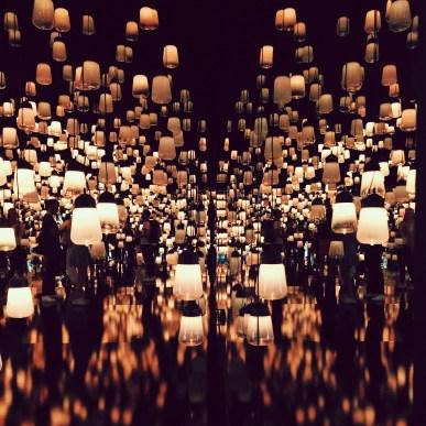 LA FORÊT AUX LAMPES