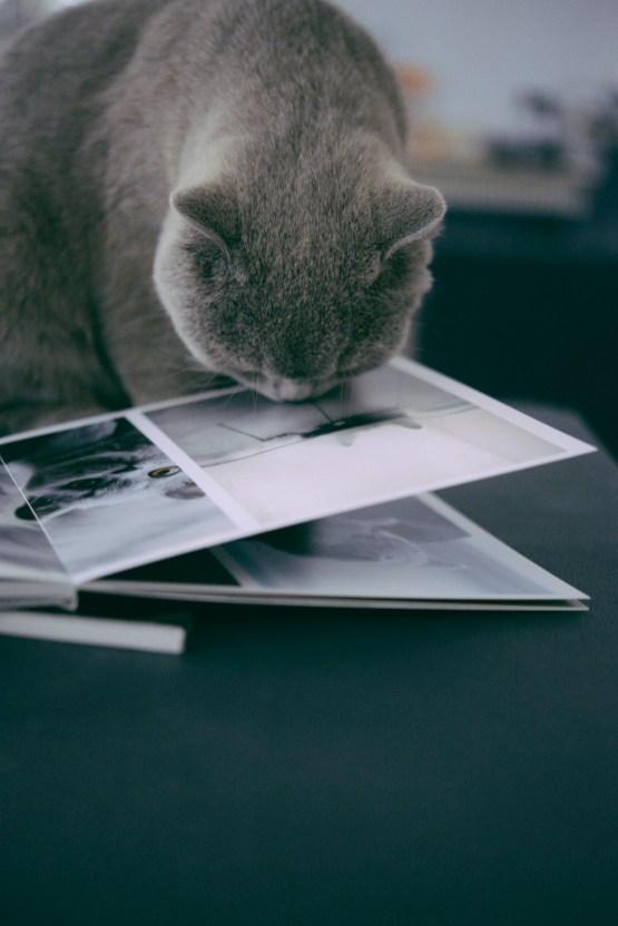 livre-photo-cheerz-8