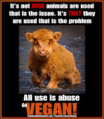 vegan-use-not-abuse