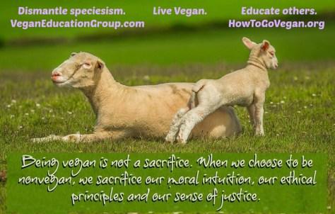 vegan sacrifice edited 003