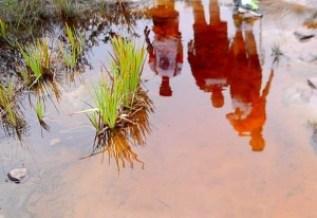 As águas da Chapada Diamantina, devido a presença de tanino oriundo da cobertura vegetal, tem esta coloração de chá avermelhado