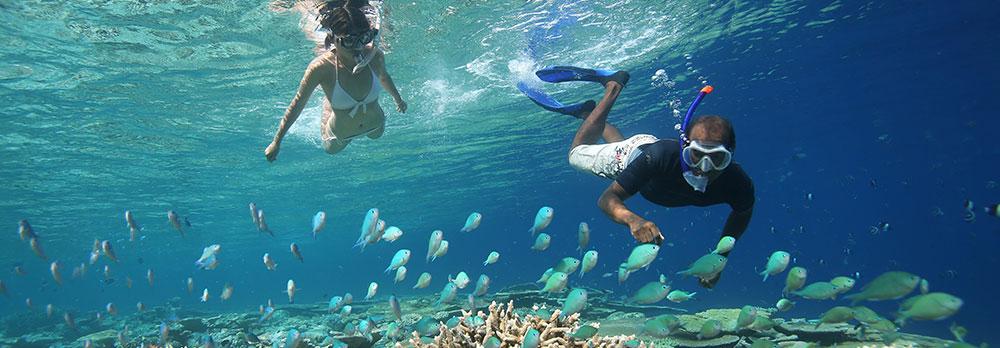 Snorkelling - 5 coisas que você precisa saber antes de ir para as ilhas maldivas