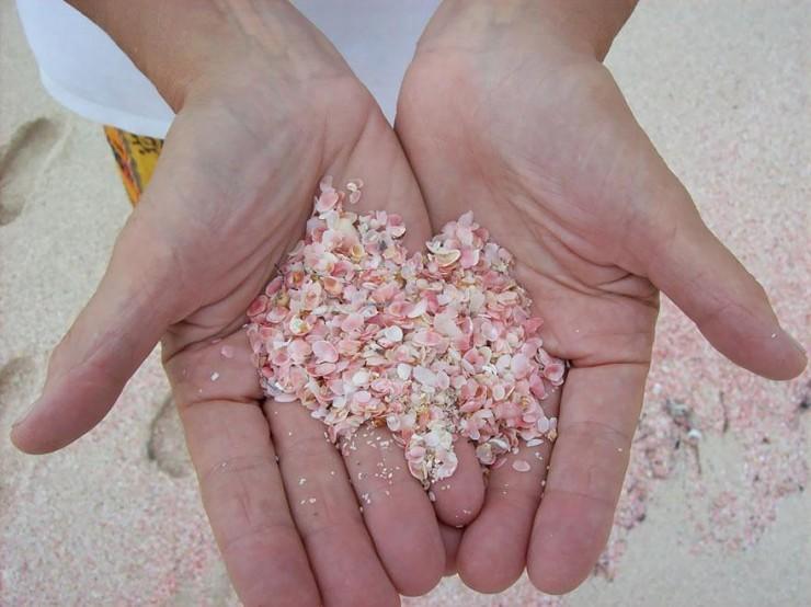 strangest-beaches-venuerific-blog-pink-sand-beach-on-hand