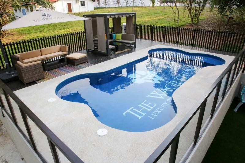 Dogs-birthday-venues-venuerific-blog-wagington-bone-shaped-pool
