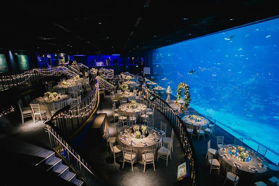 dining event at sea aquarium