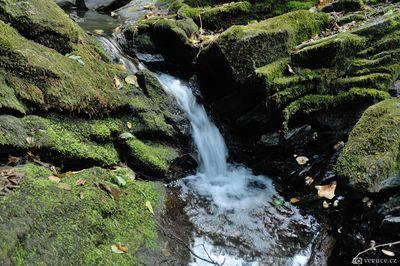 Vrchické vodopády u Kutné Hory
