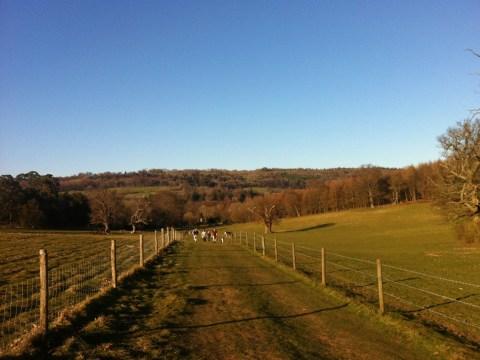 Пешие прогулки по Англии: footpaths, walking trails, bridleway
