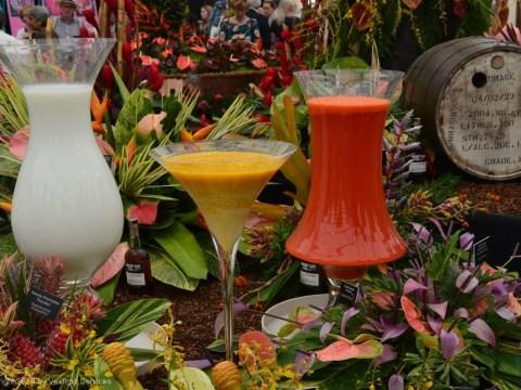 RHS Chelsea Flower Show: очарование Большого павильона Челси