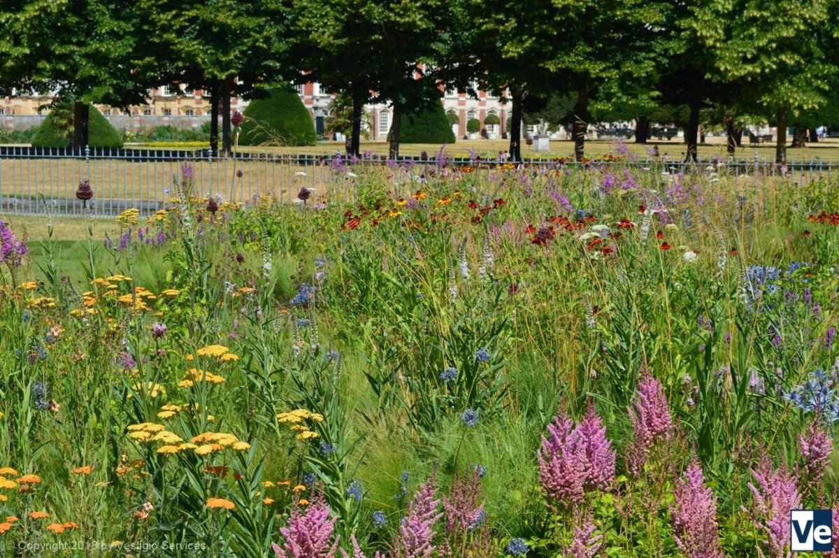 Выставка цветов во дворце Хэмптон-Корт: Далекая, близкая Англия