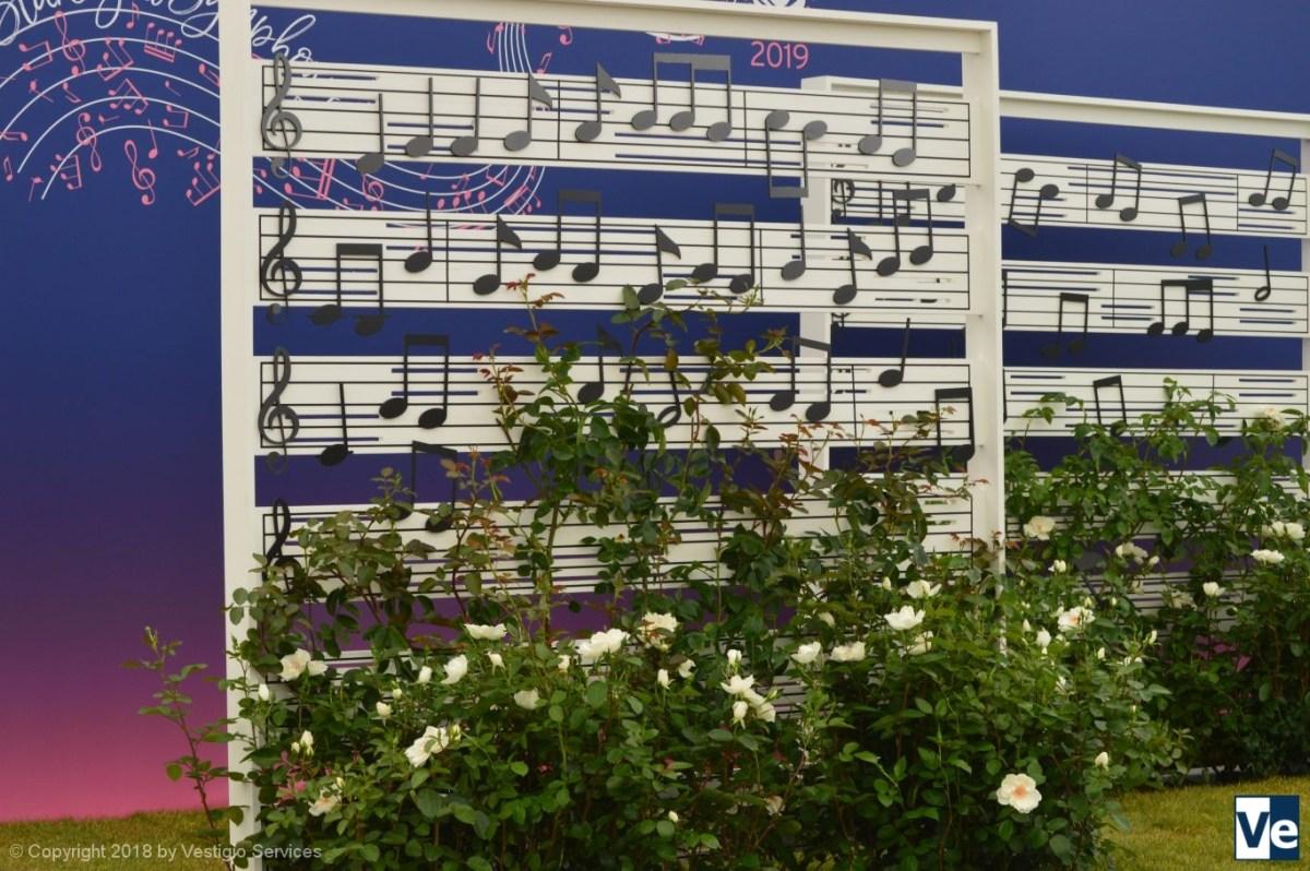Звездная симфония Rosa Starlight Symphony на фестивале роз