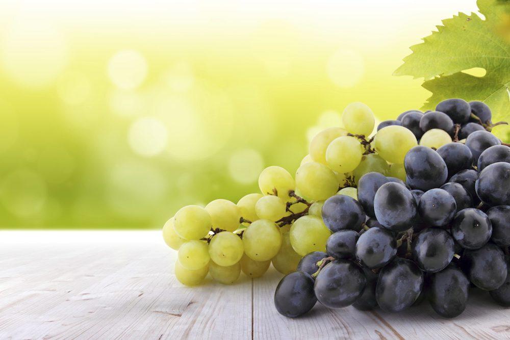Grape Tea Salton o delicioso chá gelado feito com uva