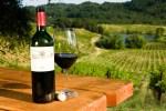 red bottle and vineyard scene