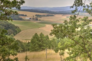 rural Oregon landscape, Willamette Valley