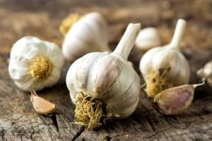 Organic garlic on wooden background