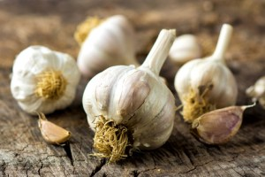 Organic garlic on wooden background