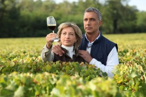 Couple checking wine in a vineyard