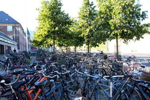 Bike Parking with Trees