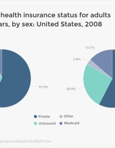 Health and wellness multi pie charts types of graphs also how to choose the best one for your data rh blogsme