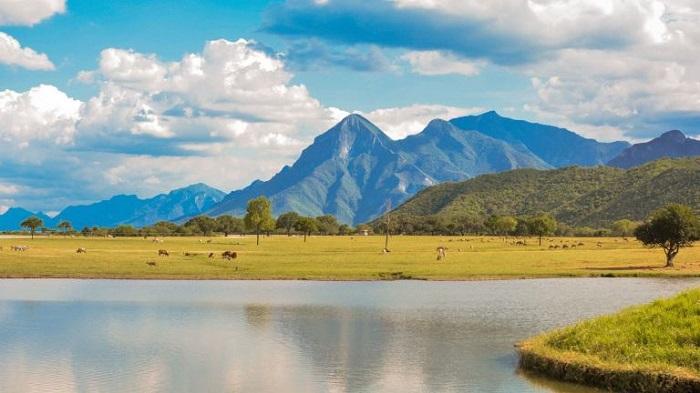 Lugares divertidos en Monterrey Bioparque Estrella