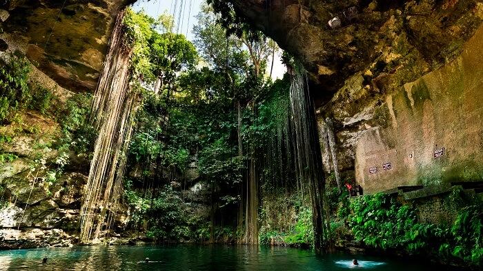 Cenotes cerca de Mérida