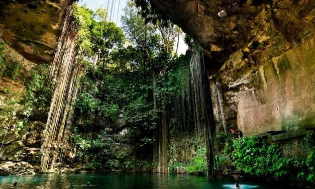5 Mejores Cenotes en Cancún y la Riviera Maya