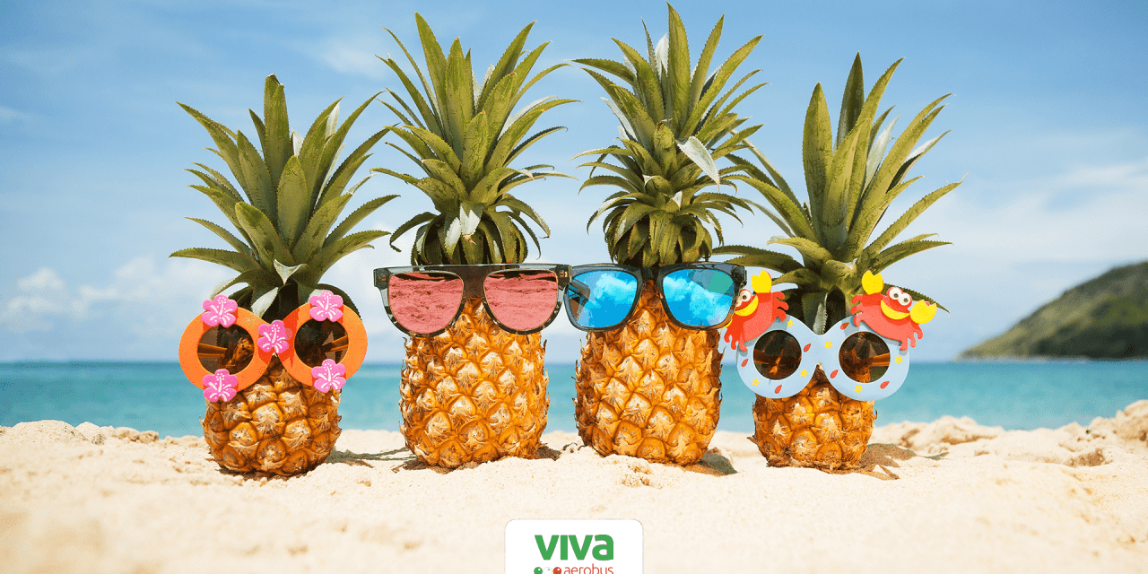 Vacaciones de verano: Guía completa de viaje