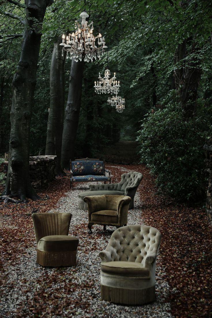 Vintage velvet beauties in the wild, what a wonderful scene - via Roomed