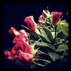 Bloemen door Bruno Bollaert