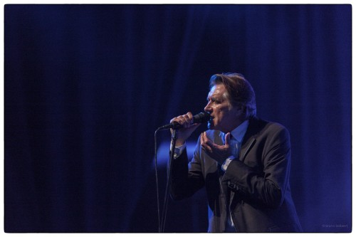 Bryan Ferry feat. The Bryan Ferry Orchestra