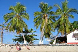 madagascarfeat Volunteer in Madagascar   The Ultimate Guide