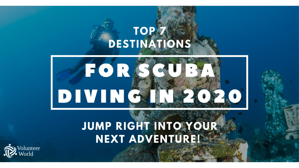 Copy of Copy of Copy of Copy of Blog top 7 scuba dive 7 Must Scuba Dive Destinations of 2020