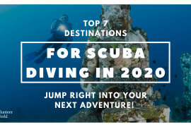 Copy of Copy of Copy of Copy of Blog top 7 scuba dive 7 Must Scuba Dive Destinations For 2020
