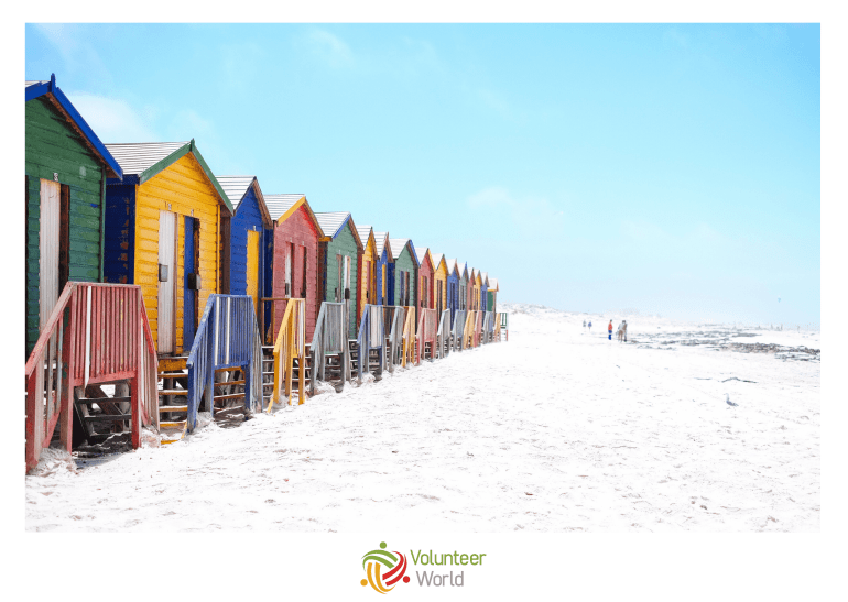 Volunteer Cape Town VoWo min Top 10 Best Places to Volunteer around the World