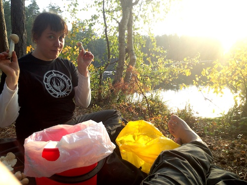Mushroom trip to Nuuksio. Camping in the same exact spot where I saw the dream that made me continue writing my novel.