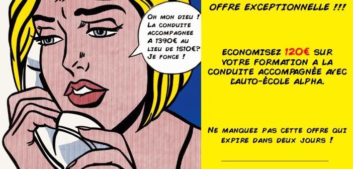 Formation conduite accompagnée : 1 390€ SEULEMENT AU LIEU DE 1 510€!!!