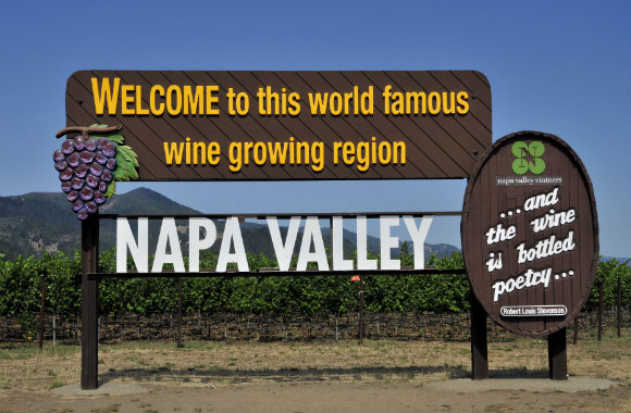vineyards-of-napa-valley-in-california-dp