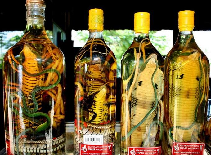 Змея, заспиртованная в бутылке. Вьетнам
