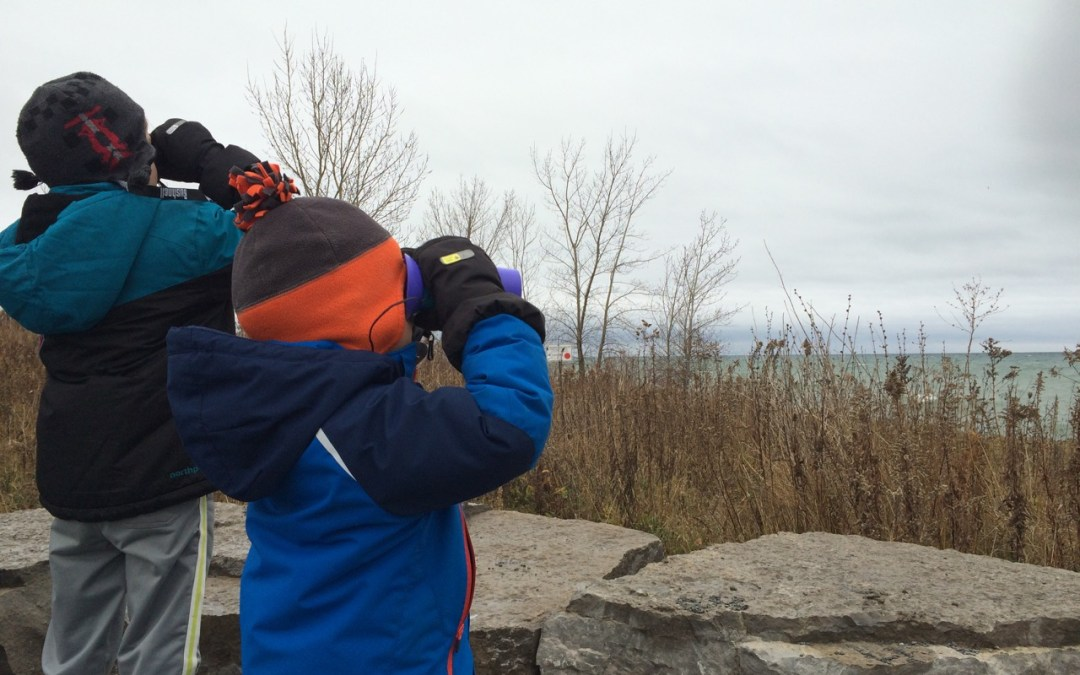 Guided Family Nature Walks in Tommy Thompson Park