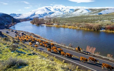 Yakima River Canyon Scenic Byway