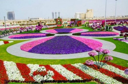 Things To Do In Dubai today