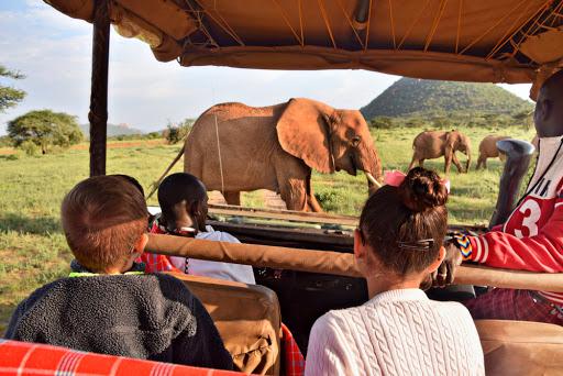 travel experiences