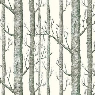 Woodland_14-05.jpg