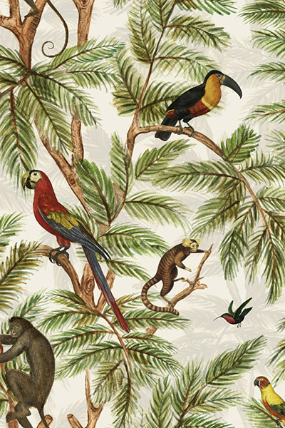 The Graduate Collection - Birds and Monkeys