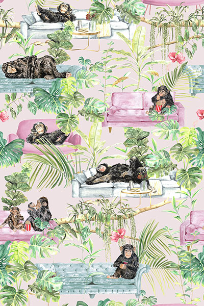 The Graduate Collection - Monkey business