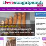 Download template web pemerintahan versi wordpress