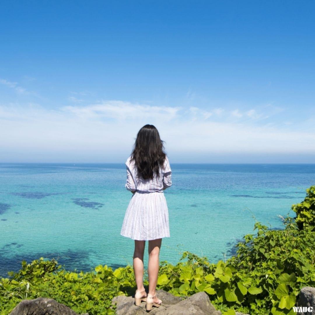 WAUG Pink Jeju Island Bus Tour