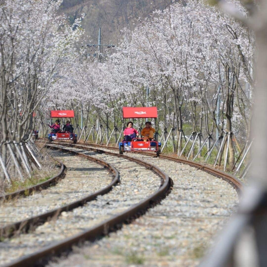 gangchon-rail-park-from-seoul