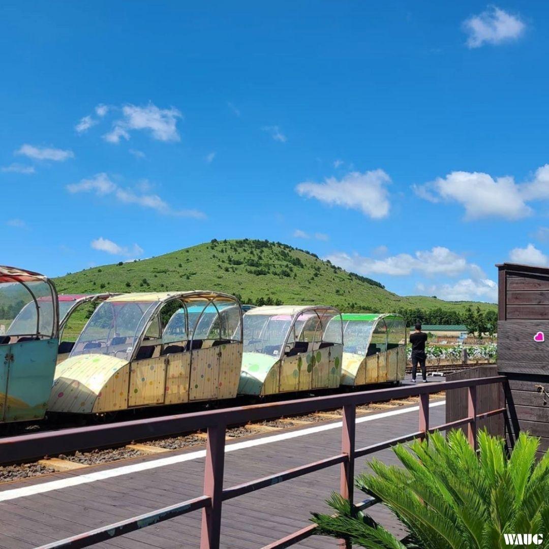 jeju-rail-bike-ticket